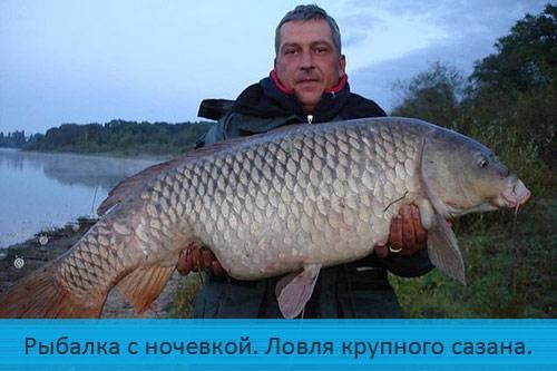 Рыбалка с ночевкой. Ловля крупного сазана (карпа).