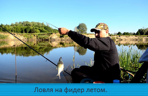 Ловля на фидер летом. Рыбалка на сильном течении.