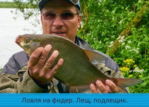 Ловля на фидер. Москва-река, лещ, подлещик.