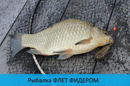 Рыбалка с ФЛЕТ ФИДЕРОМ - ловля рыбы с комфортом!