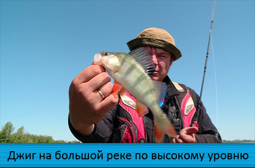 ловля на москва реке на джиг