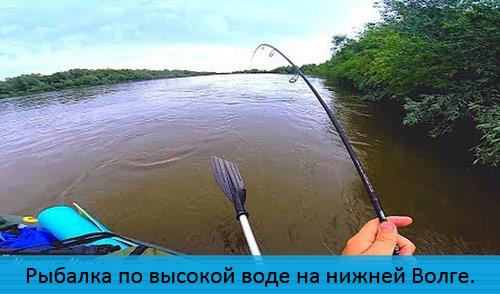 Рыбалка по высокой воде на нижней Волге. Трофей на ультралайт.