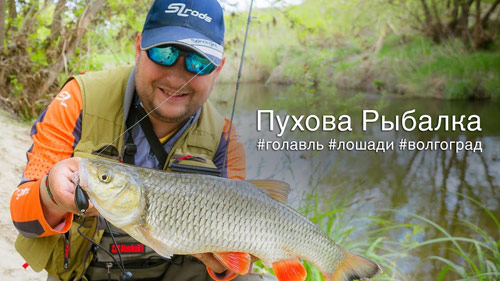 Ловля голавля в Волгоградской области.