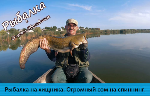 Рыбалка на хищника. Огромный сом на спиннинг. (21+)