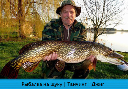 Рыбалка на щуку | Твичинг | Джиг