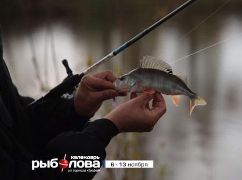 Календарь рыболова с 6 по 13 ноября 2017