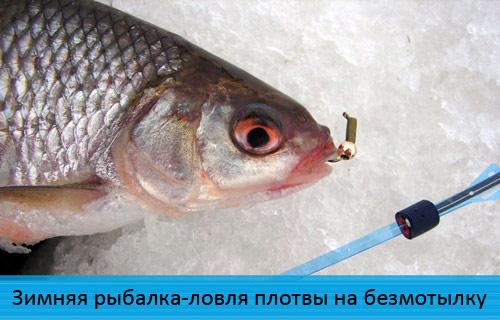 Зимняя рыбалка-ловля плотвы на безмотылку-гвоздешарик