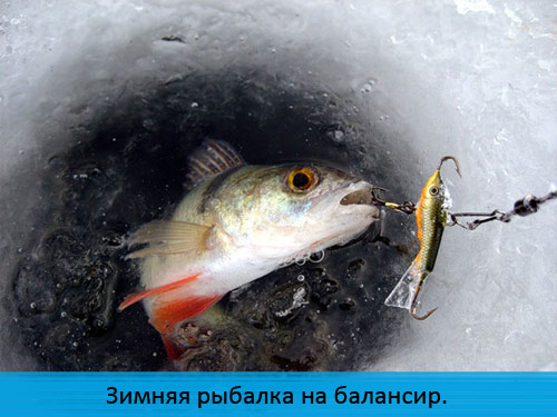 Зимняя рыбалка на балансир.