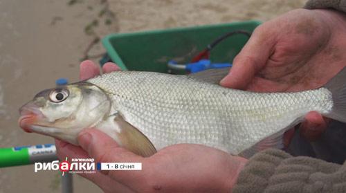 Календарь рыболова с 1 по 8 января 2018