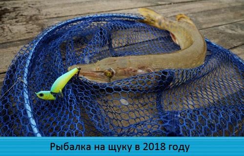 Рыбалка на щуку в 2018 году