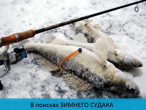 крым рыбалка на джиг