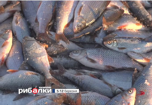 Календар рибалки з 5 по 12 березня 2018 року