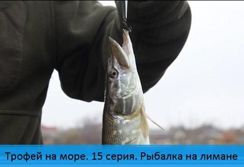 Трофей на море. 15 серия. Рыбалка на лимане