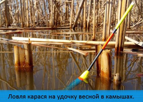Ловля карася на поплавочную удочку весной с лодки в камышах.