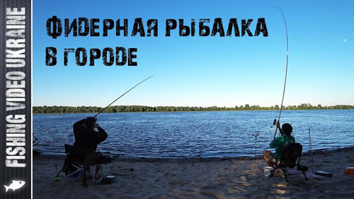 Начало лета! Разгар рыбалки на фидер.