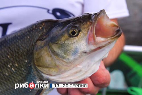 Календар рибалки з 13 по 20 серпня 2018 року