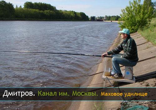 ловля маховой удочкой на канале москвы