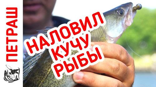 Наловил много рыбы под ногами!