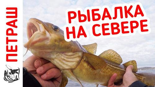 Рыбалка на СЕВЕРЕ!!! Поймал Чудо-Рыбу!