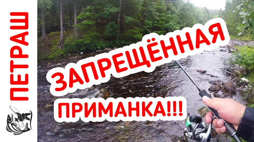 Рыбалка в ДИКИХ МЕСТАХ! Давно я так не кайфовал! День третий