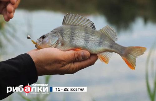 Календар рибалки з 15 по 22 жовтня 2018 року