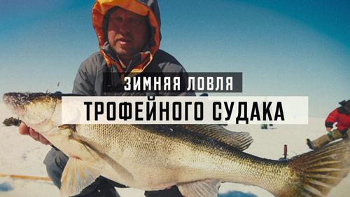 Видео: Братья Щербаковы выпуск 64 - Ловля судака зимой на водохранилище - Портал о рыбалке