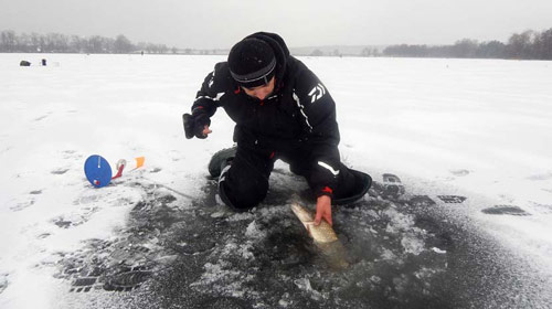 Жерлицы. ПЕРВЫЙ ЛЁД. Зимняя рыбалка на щуку.