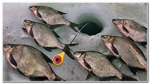 Рыбалка с ночёвкой на льду в тепле и комфорте.