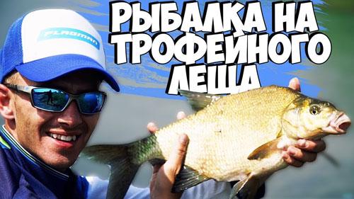 Рыбалка на фидер! Трофейные лещи рвут лески!