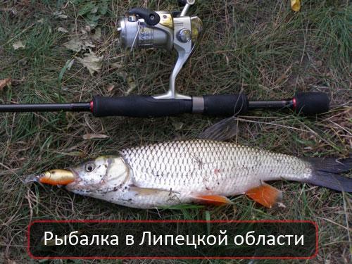Рыбалка в Липецкой области