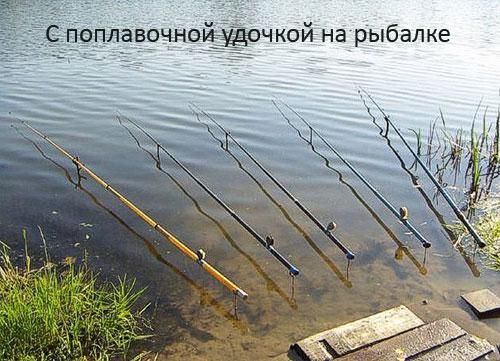 С поплавочной удочкой на рыбалке