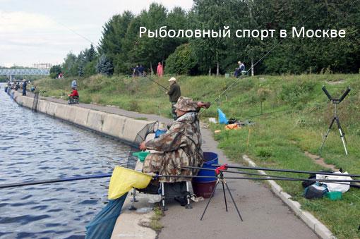 Рыболовный спорт в Москве