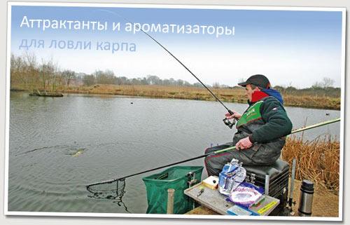 Аттрактанты для рыбалки своими руками