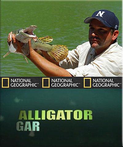 Рыбы-чудовища. Аллигаторова щука