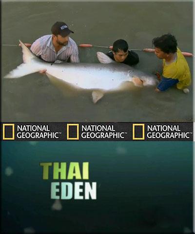 Рыбы-чудовища. Таиландский рай