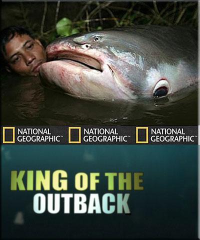 Рыбы-чудовища. Король пресных вод Австралии