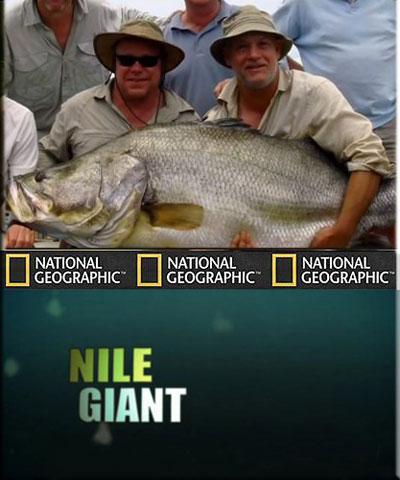 Рыбы-чудовища. Нильский гигант