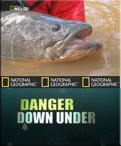 Рыбы-чудовища. Муррейская треска