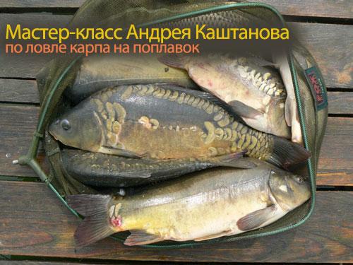 Мастер-класс Андрея Каштанова по ловле карпа на поплавок