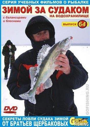 За судаком на Дон - Рыбалка
