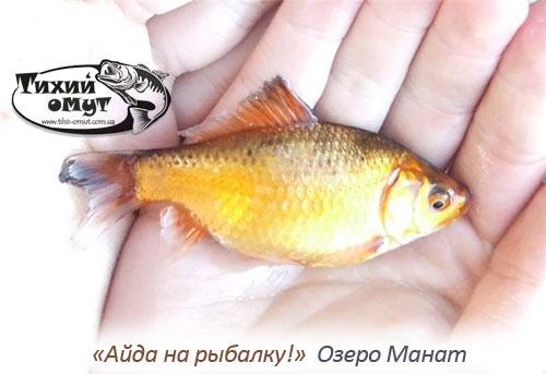 «Айда на рыбалку!» Озеро Манат