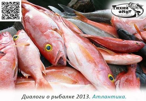Диалоги о рыбалке 2013. Атлантика.