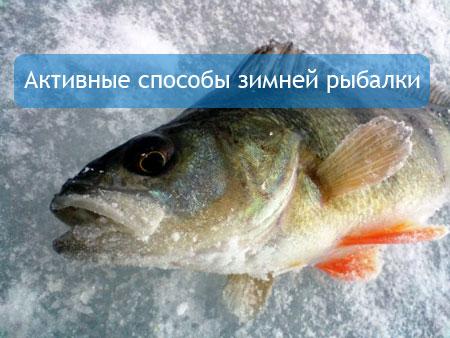 Активные способы зимней рыбалки