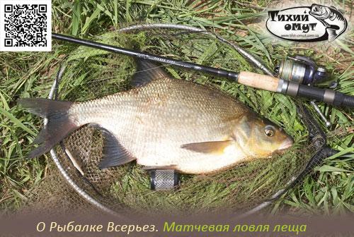 О Рыбалке Всерьез. Матчевая ловля леща