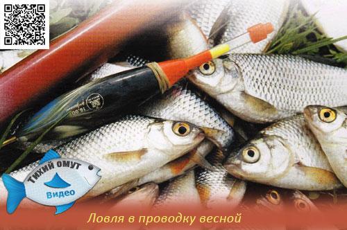 посмотреть рыбалка в проводку
