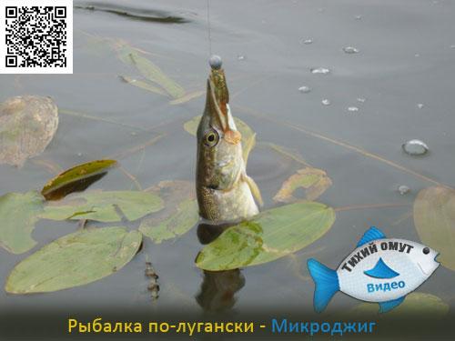 Рыбалка по-лугански - Микроджиг