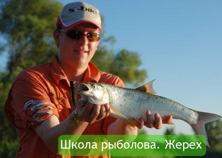 Школа рыболова. Жерех
