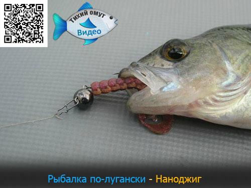 Рыбалка по-лугански - Наноджиг.