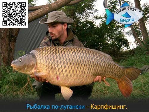 Рыбалка по-лугански - Карпфишинг.