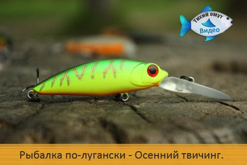 Рыбалка по-лугански. Осенний твичинг.